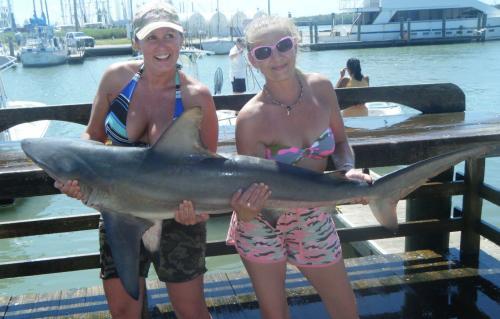 Galveston texas fishing charters for Fishing charters galveston tx