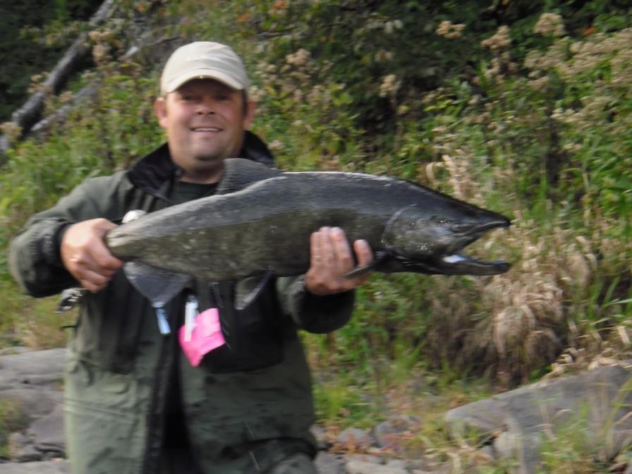 Salmon steelhead and brown trout fishing in new york state for Trout fishing ny