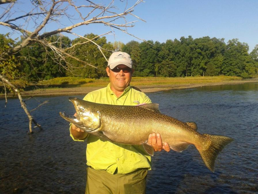 Salmon steelhead and brown trout fishing in new york state for New york fishing